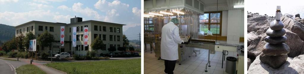 Firma REGENA AG - Ebikon - 2003
