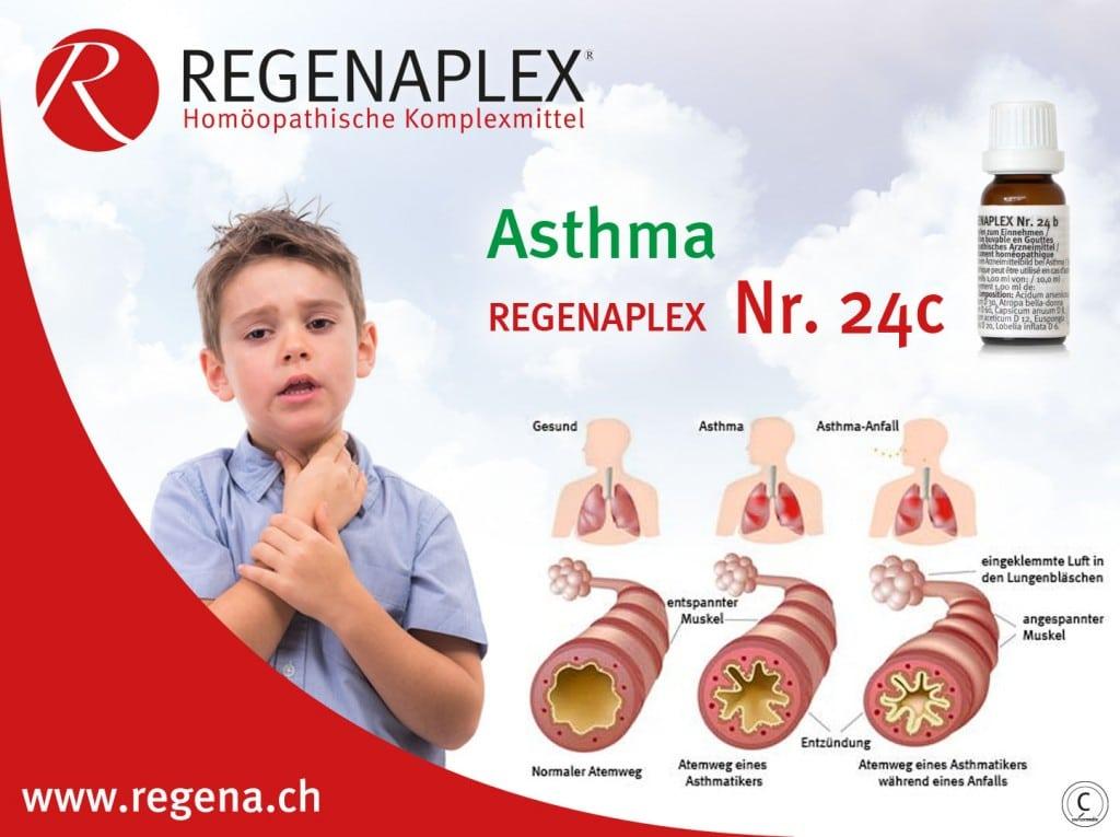 REGENAPLEX Nr 24c Asthma